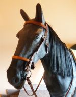 Alta Escuela - Doma Classica single bridle